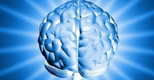La méditation freine le vieillissement du cerveau